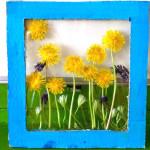 Tablouri inedite din flori naturale. Adu-l pe copilul tau mai aproape de natura