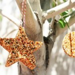 Hranitoare pentru pasari in forme de biscuiti - copiii adora sa le faca!