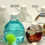 Starea vremii in sticle senzoriale ingenioase si simplu de facut